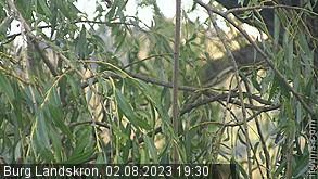 500m: Annenheim, Blick zur Gerlitze (NO)